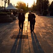 Old Men With Sticks