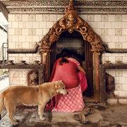 Praying Woman With Dog