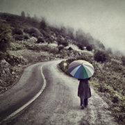 Winding Foggy Road