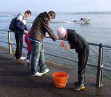 open val clark crabing.jpg