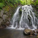 Tom-Gills-Falls