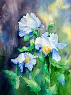 Blue Poppies. Sold