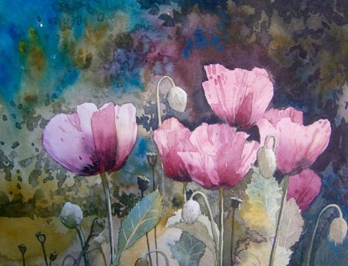Poppies from Giverny