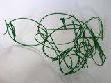 Green Scribble