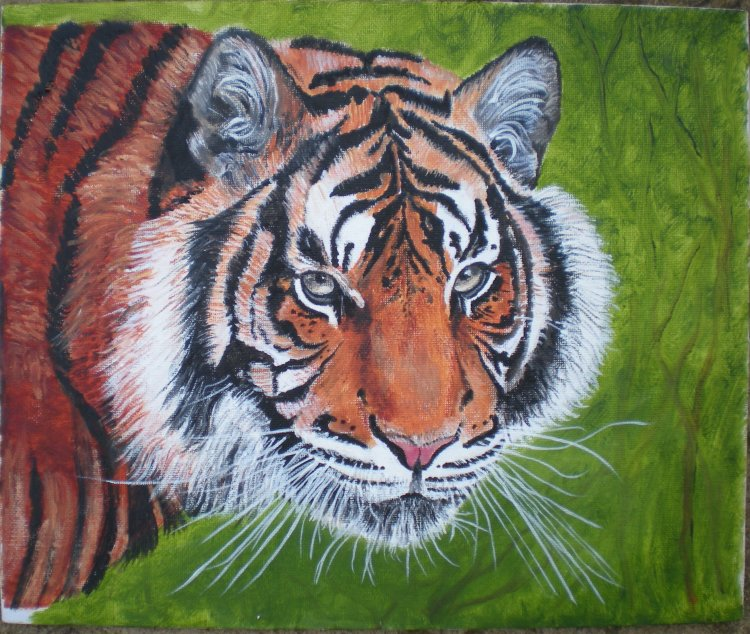 Sumatran Tiger (SOLD)