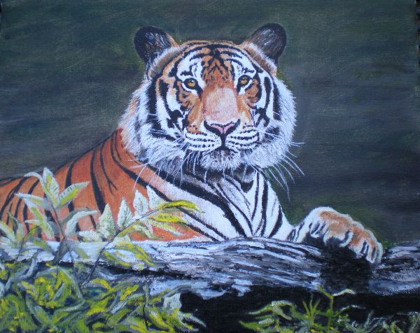 Tiger by log (SOLD)