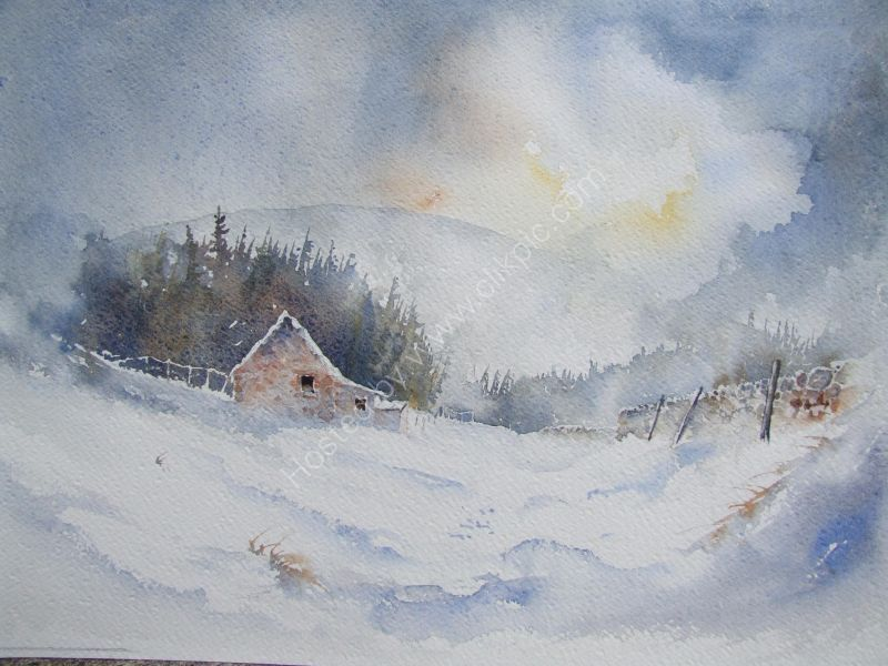 Longback Cottage Nr Kirknewton in the Cheviot Hill. Painted as a demonstration piece for Coldstream Watercolour group.