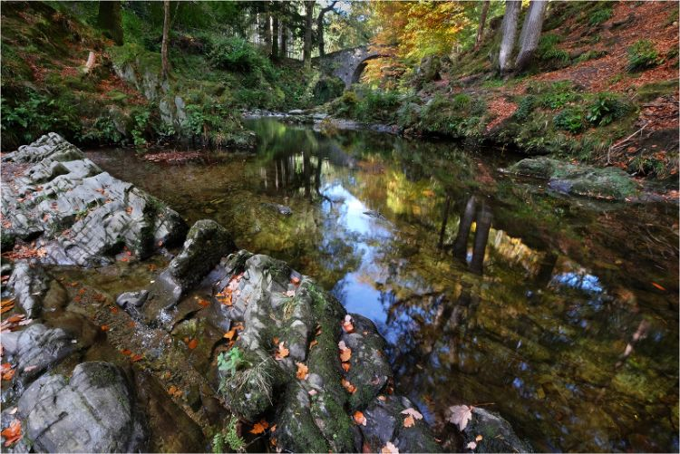 Autumn reflection at Foleys Bridge