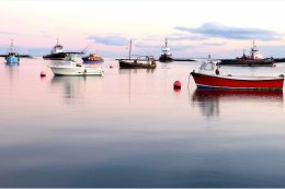 Boats on the Lough at Greencastle Co. Down
