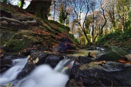 Drumlack River at Gosford Forest Park Markethill Armagh