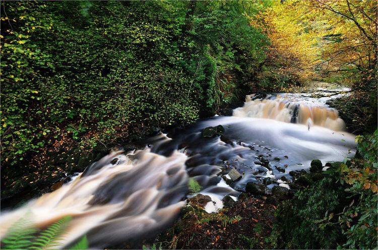 Glenariff River Co. Antrim