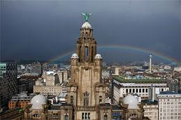 Liver Bird & Rainbow