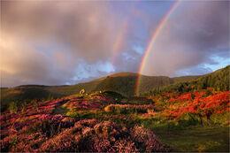 Rainbow at Cloughmore big stone
