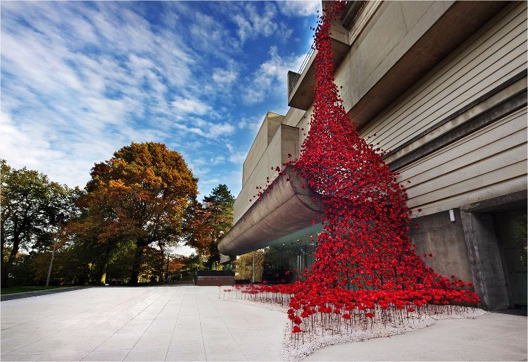 Weeping Window of Poppies at The Ulster Museum