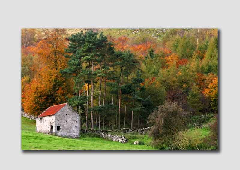 Autumn Barn  -  PS010