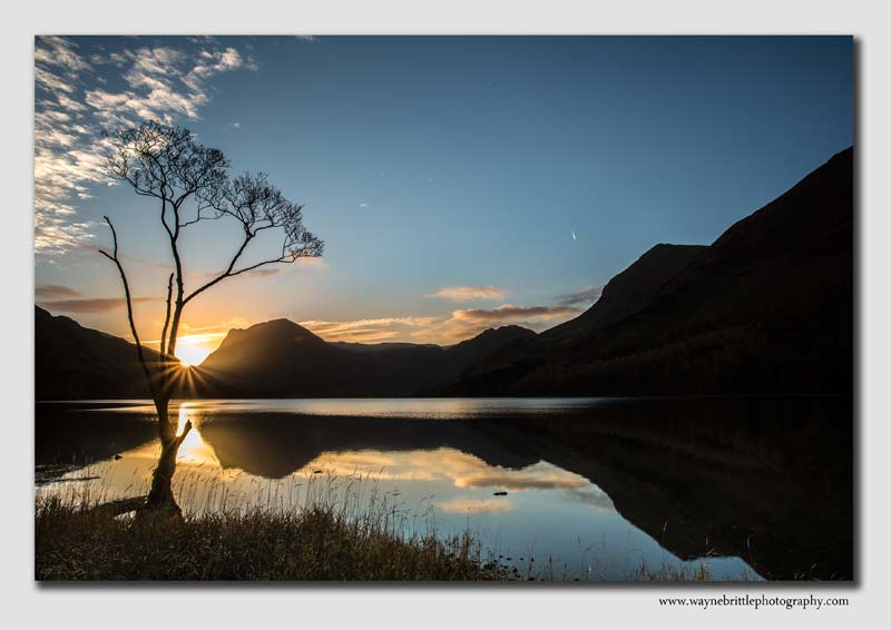 Lone Tree at dawn - Lake District - LSW5D31231