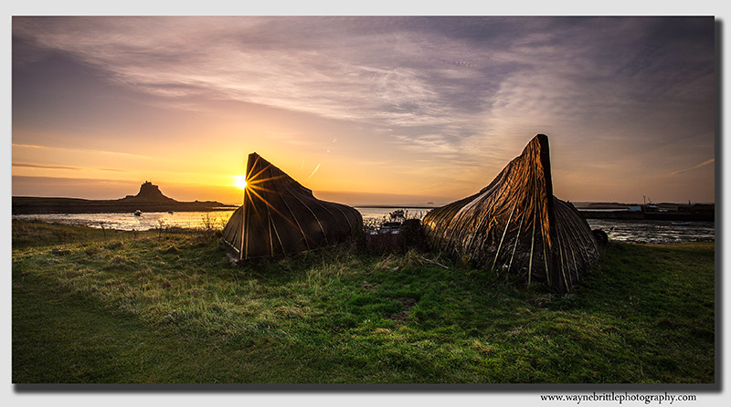 Dawn breaking on Holy Island - W5D37128