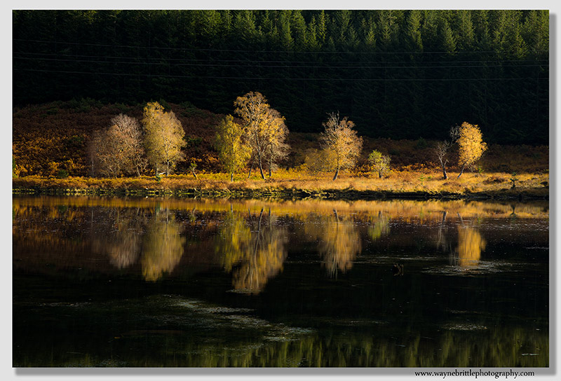 Dunvegan Autumn Reflections