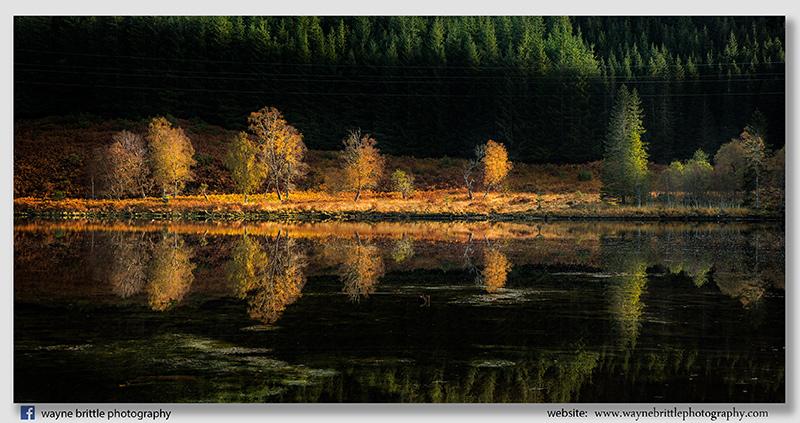 Dunvegan Autumn Light