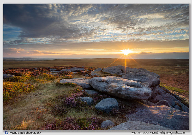 Heather and Sky Sunrise on Stanage Edge - W5D44212