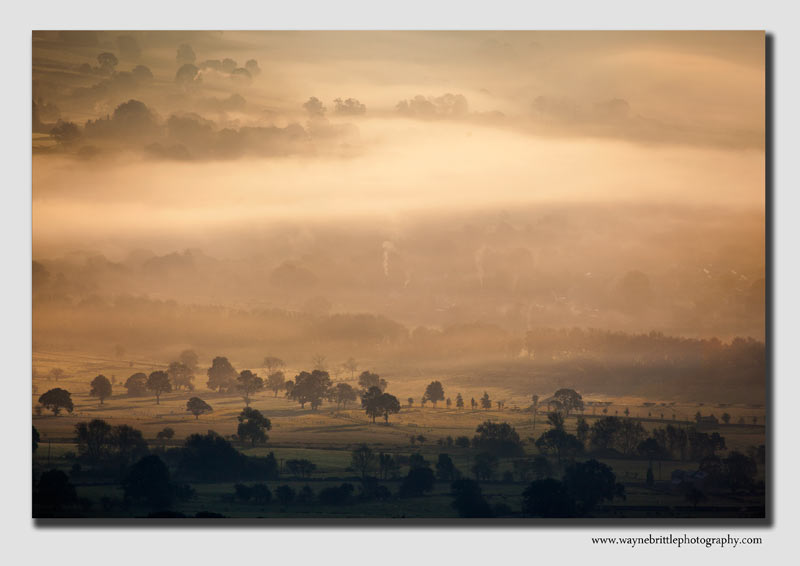 Hope Valley Mist - 7898