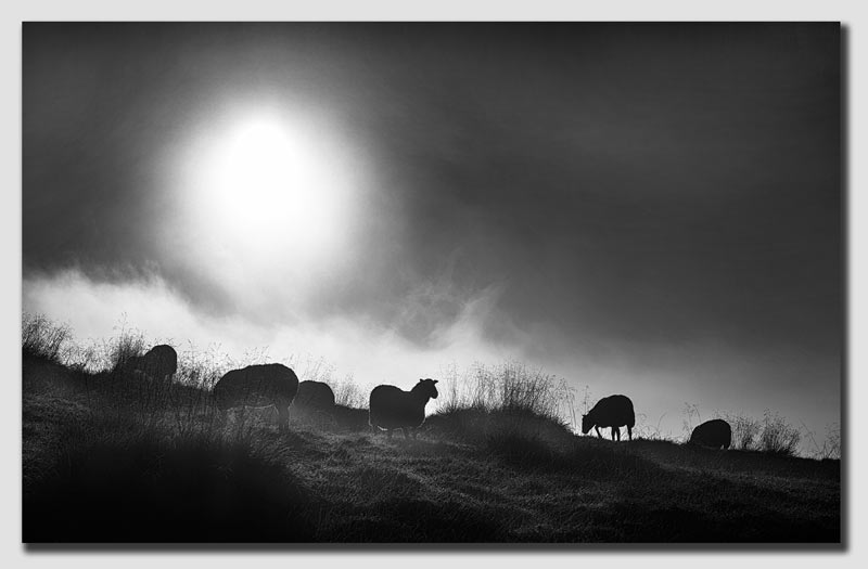 Into the morning light - Peak District - SS7866