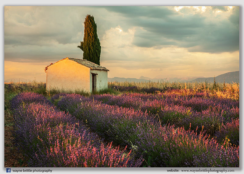 Last Light at the Lavender Hut 2 - 5DSR43427