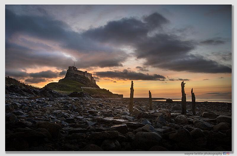 Lindisfarne Castle Just Before Dawn - W5D45815