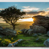 Holwell Torr evening sun - W5D34442