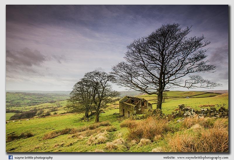Old Barn - FA8X8922