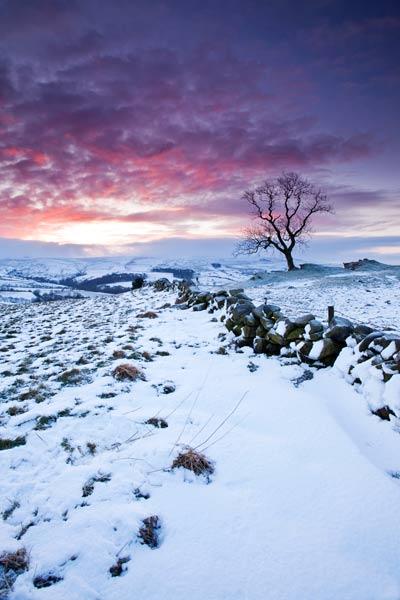 Staffordsire Moorland Winter Dawn  -2 - 3859