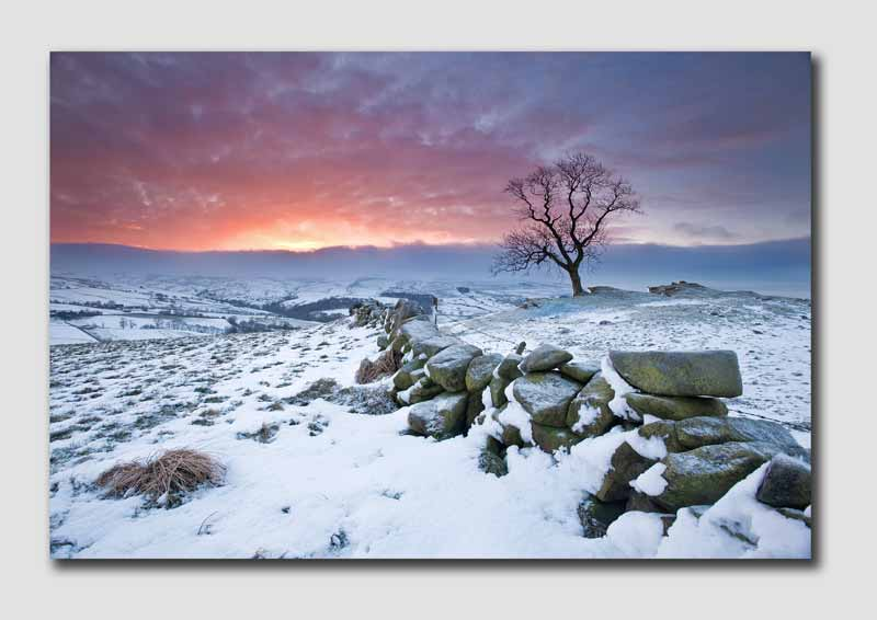 Staffordshire Moorland Winter Dawn 6 - SS3871