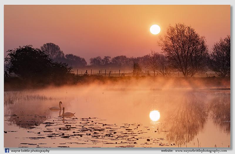 Willington Pond Sunrise