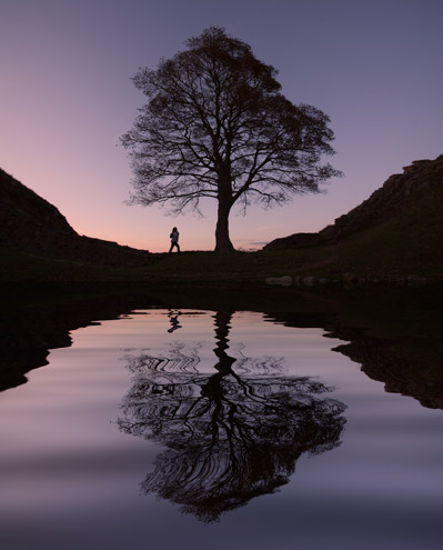 Sycamore Gap Dusk Reflection - R107