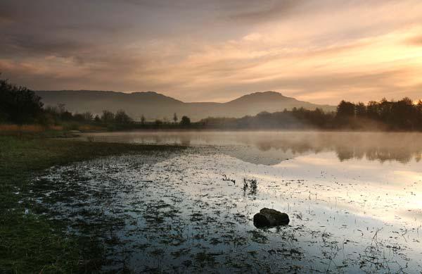 Tittesworth Dawn '2' - SS063 - Staffordshire