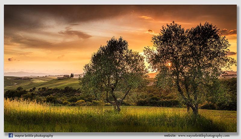 Tuscan Fields Sunset