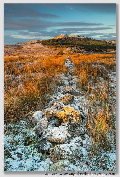 Winter Light on the Campsie Fells