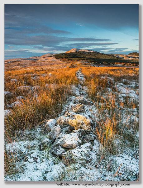 Winter Light on the Campsie Fells 2