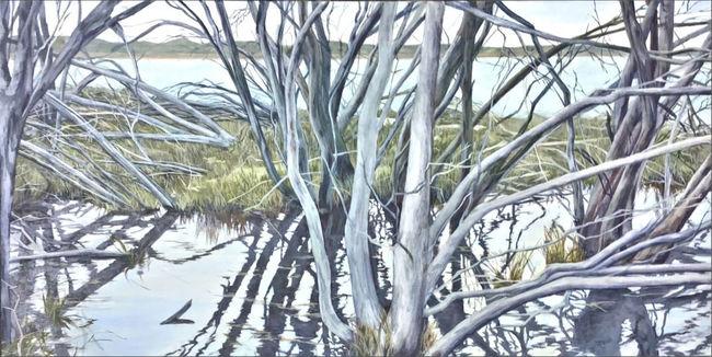 Kangaroo Island wetland Bronwen Bassett
