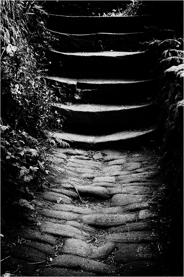 Setts and Steps