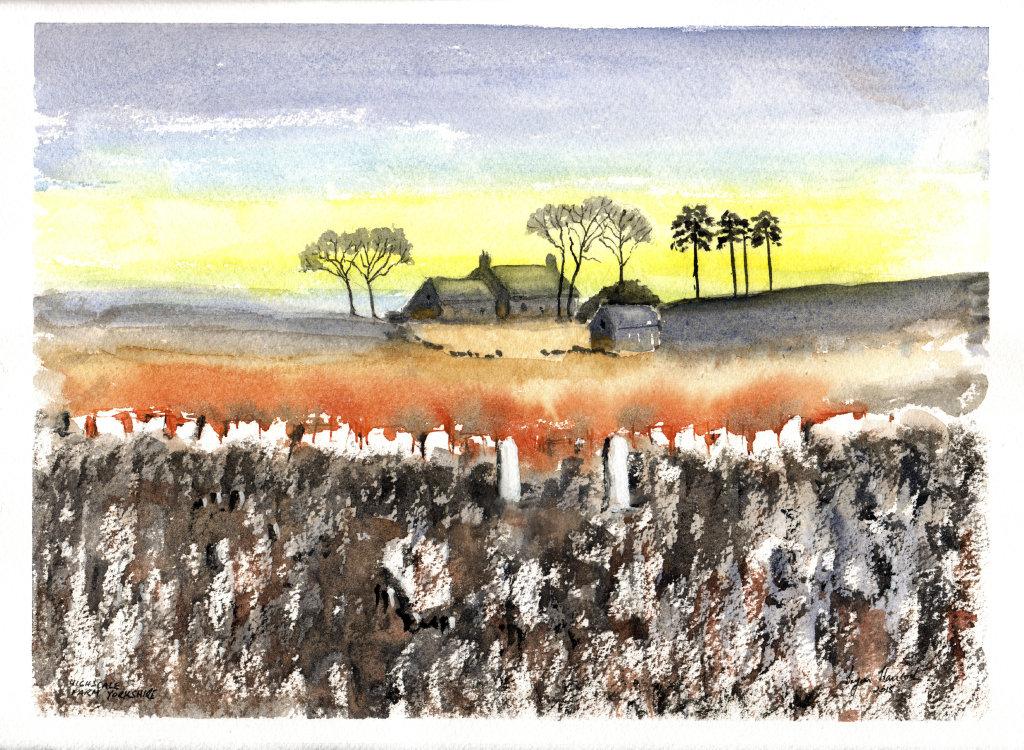 Hallscale Farm Yorkshire