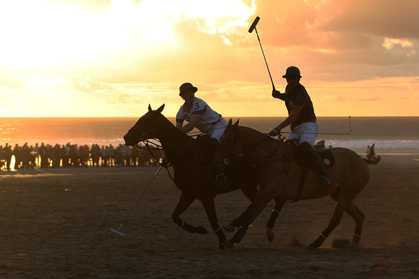 Polo - Cornwall