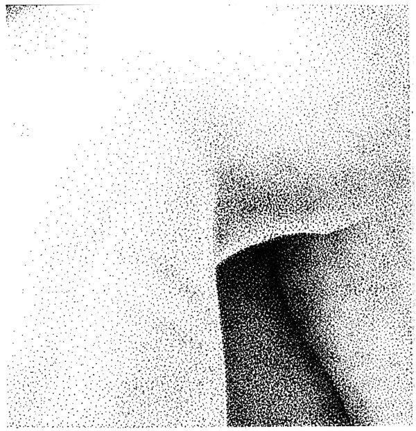 Bodyscape Liz 11