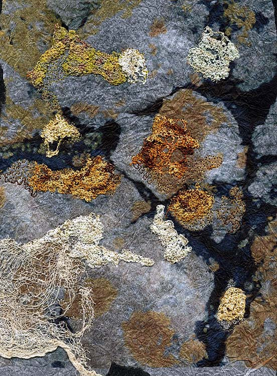 Great Orme  lichens