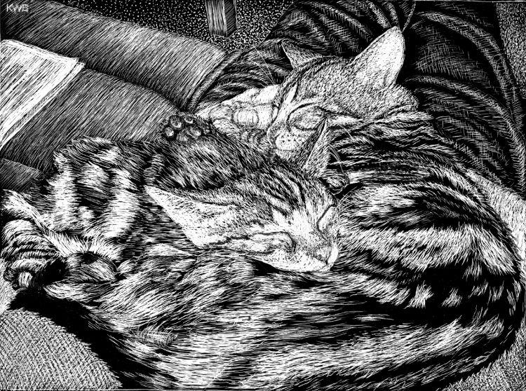 Ben & Tilly 2