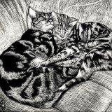 Ben & Tilly a 1