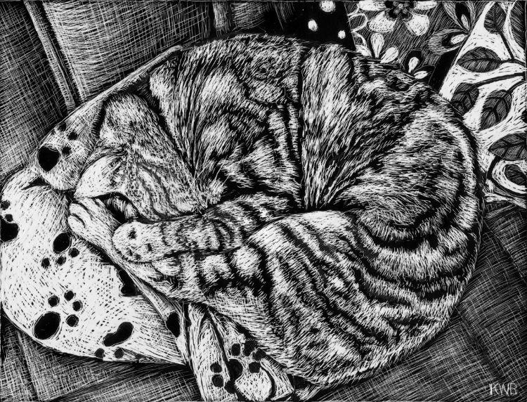 Tilly Resting 11