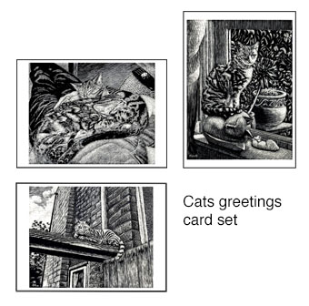 Cats greetings card set