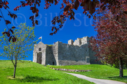 093 OYSTERMOUTH CASTLE