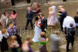 230 Weddings